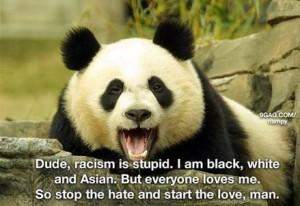 racism-is-stupid