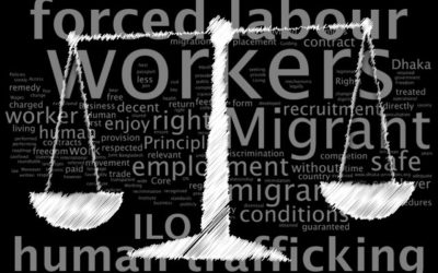 Deportation instead of protection of a victim of labour exploitation