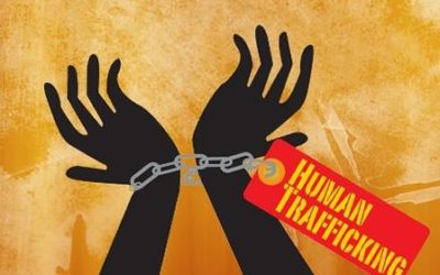 The positive steps for combatting trafficking in human beings  must not lead to complacency