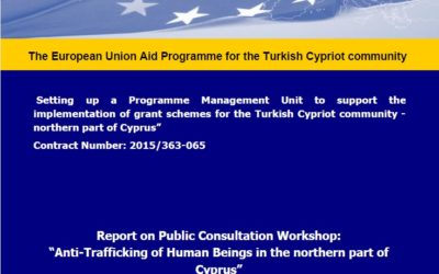 """""""Setting up a Programme Management Unit to support the implementation of grant schemes for the Turkish Cypriot community – northern part of Cyprus"""""""